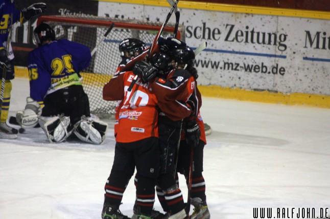 Die Young Saale Bulls kommen zurück aufs Eis