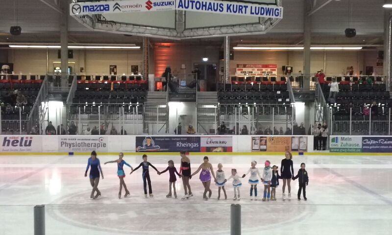 Paradice Cup 2015 in Bremen