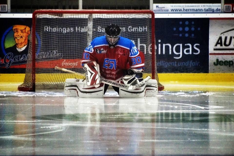 Saale Bulls 1b brauchen den Sieg gegen Erfurt Kojoten