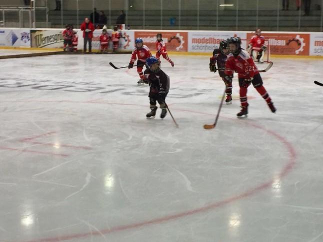 Young  Saale Bulls gegen Crimmitschau