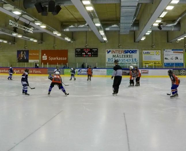 Young Saale Bulls U12 - Großfeld in Dresden