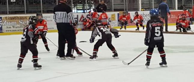 Young Saale Bulls vs Preussen