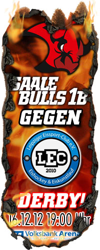 Saale Bulls 1b gegen Leipzig Icefighters 1b - Das Derby