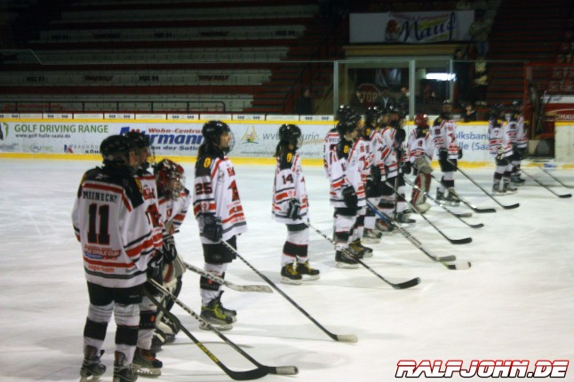 Young Saale Bulls 2013