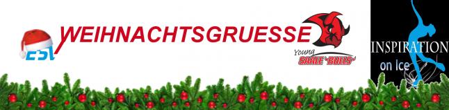 newsletter-weihnachten16