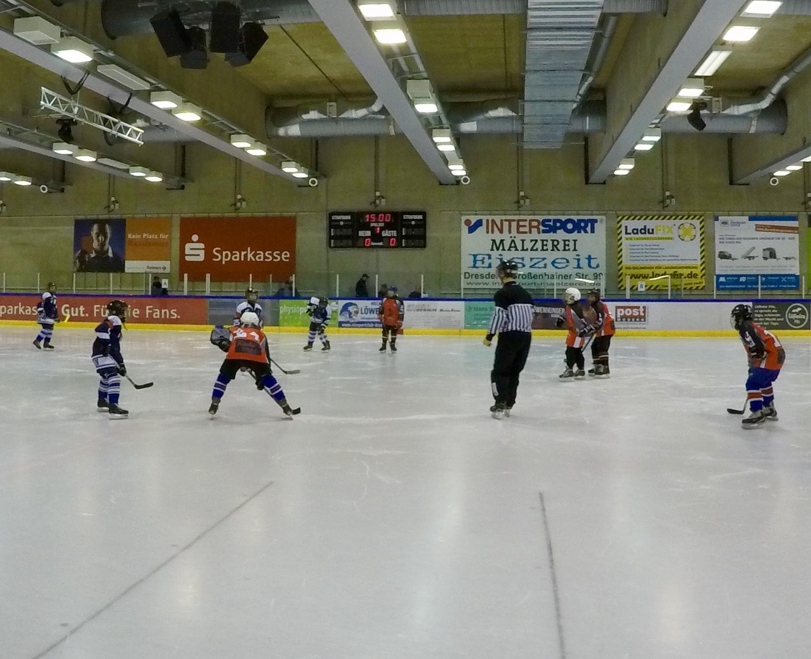 Young Saale Bulls U13 startet mit 2 Teams