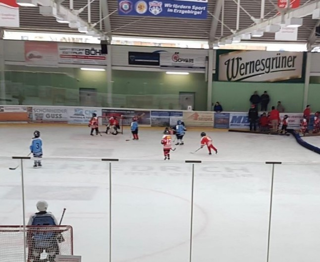 Young Saale Bulls U7 - playing the game
