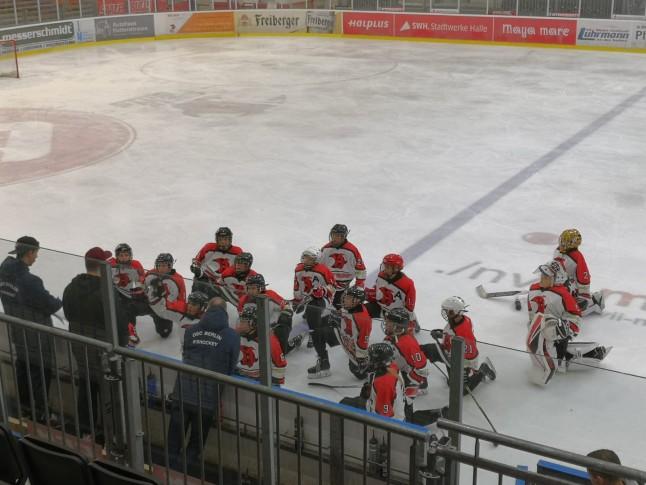Young Saale Bulls Besprechung gegen Preussen Berlin