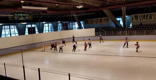 Spielszene zwischen den Young Saale Bulls und F.A.S.S. Berlin